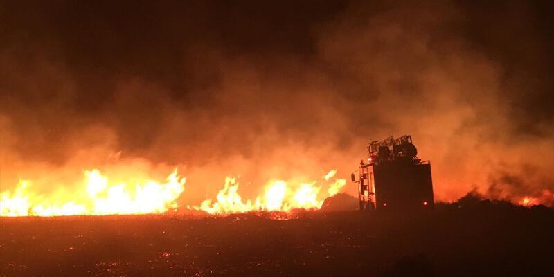 Avşa Adası'nda yangın
