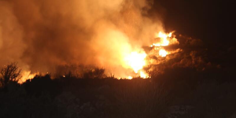 Bodrum'da yangın! Alevler rüzgarın etkisiyle yayıldı