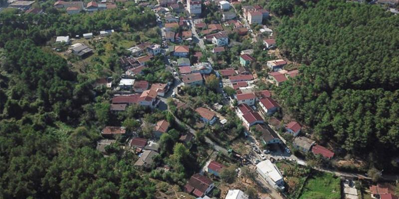 İstanbul ormanlarındaki 315 kaçak yapı yıkıldı
