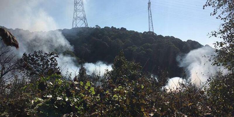 Son dakika... Beykoz'daki orman yangınında kundaklama şüphesi