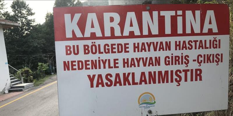 Denizli'de kuduz karantinası! 15 mahallede giriş çıkışlar yasaklandı