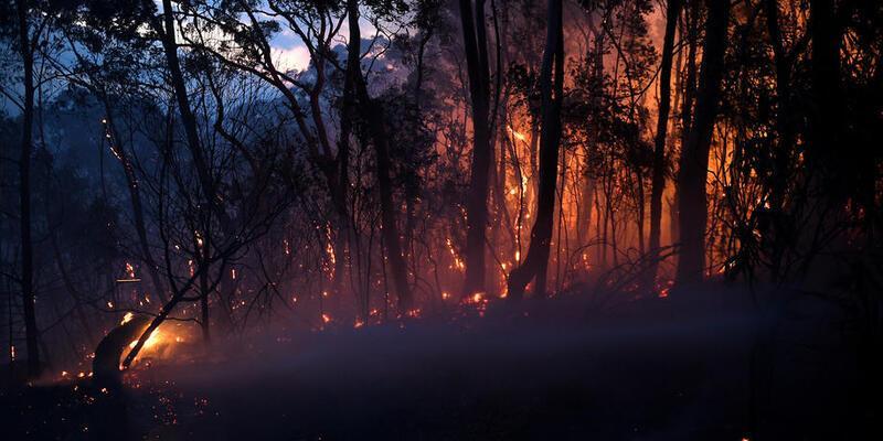 Avustralya'da orman yangınları büyüyor