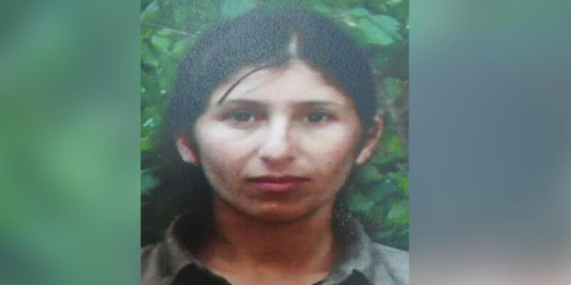 PKK'nın sözde 'Dersim eyaleti' konsey üyesi sağ yakalandı