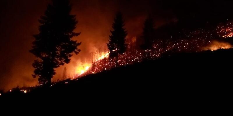 Karadeniz'deki orman yangınlarıyla ilgili flaş açıklama