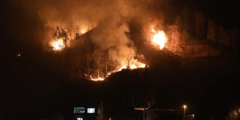 İçişleri Bakanlığı'ndan Karadeniz'deki yangınlarla ilgili açıklama