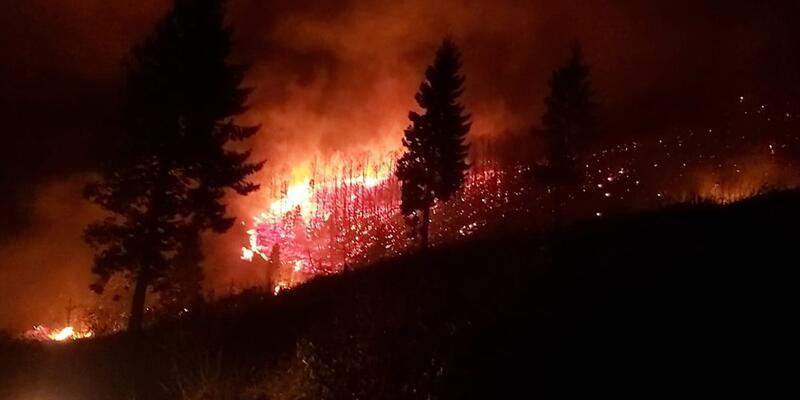 Son dakika... Trabzon'daki yangınları ile ilgili 7 kişi hakkında soruşturma