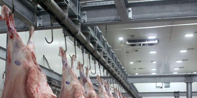 Bursa'da büyükbaş hayvanda şarbon tespit edildi, mezbaha geçici olarak kapatıldı