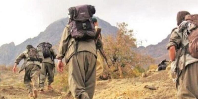 2 PKK/YPG'li terörist teslim oldu