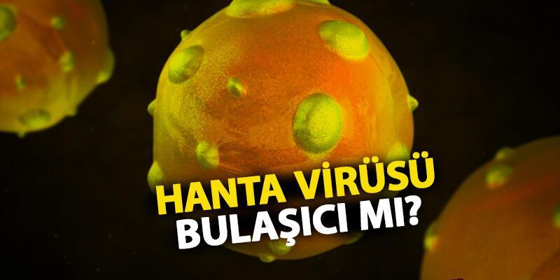 Çin'de hantavirüs paniği! Hanta virüsü nedir, bulaşıcı mı?