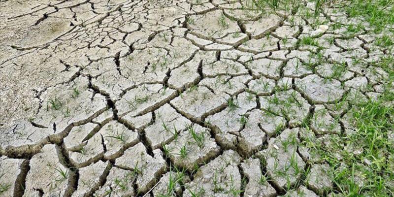 Dünya Meteoroloji Örgütü'ne göre koronavirüs salgını iklim değişikliğini durdurmayacak