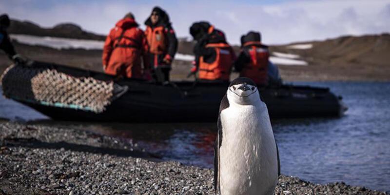 Koronavirüsün görülmediği tek kıta: Antarktika