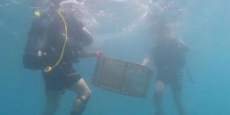 Yasa dışı 'balık' avlayanlara operasyon