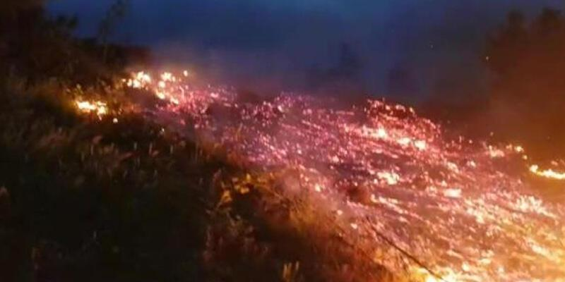 Bursa'da orman yangını! 10 dönümlük alan kül oldu