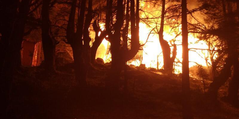 Ahşap evde çıkan yangın ormana sıçradı