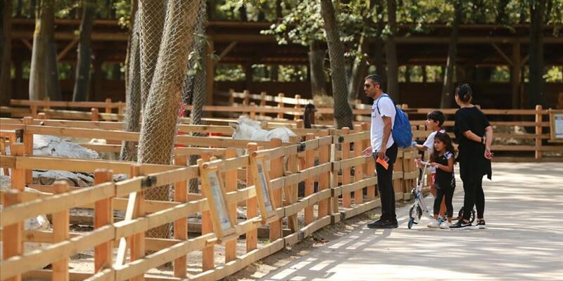 44 milli park, 249 tabiat parkı 1 Haziran'da açılıyor