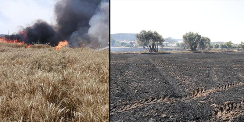 40 ton 'buğday' kül oldu