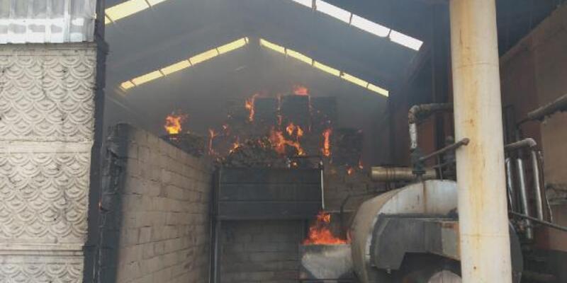 Son dakika... Yonca ve yem fabrikasında yangın