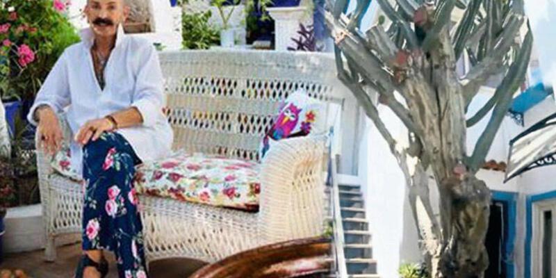 Cemil İpekçi 250 yıllık dev kaktüs için villa aldı