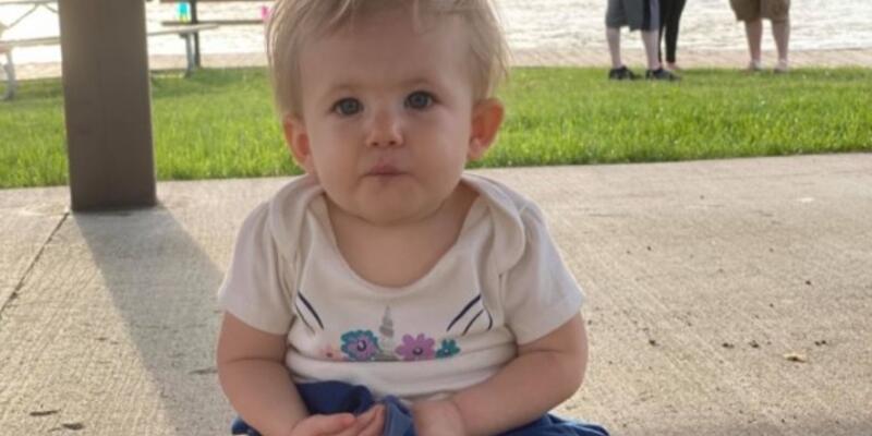 Son dakika... ABD'de pitbull dehşeti! 17 aylık bebeği öldürdü