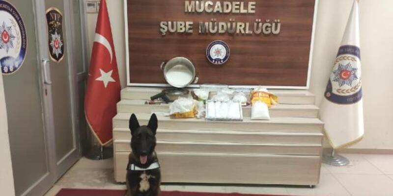 Kedi maması poşetlerine gizlenen uyuşturucuları 'Zeus' buldu
