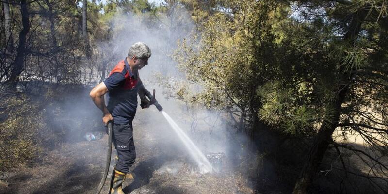 Son dakika... Çanakkale'de korkutan orman yangını