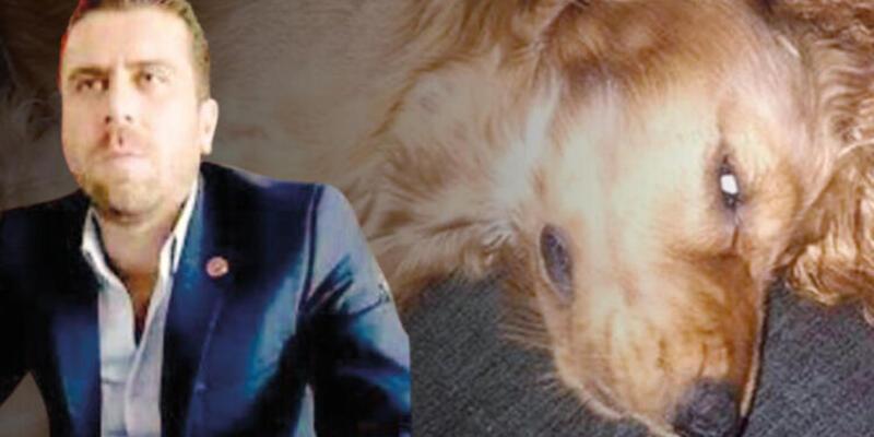 Son dakika haberi: Köpeğe tecavüz iddiası! Sosyal medya ayağa kalktı! Volkan Uzun tutuklandı