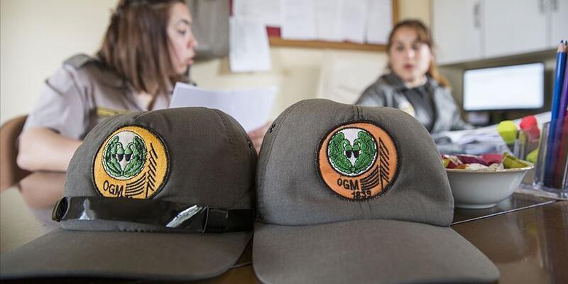 Orman Genel Müdürlüğü 700 daimi işçi alacak