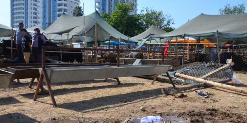 Son dakika... Hayvan pazarında yer kavgası: 2 ağır yaralı