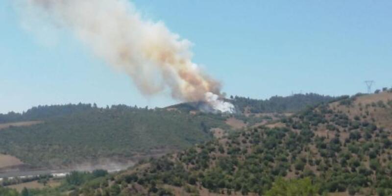Balıkesir Dursunbey'de orman yangını