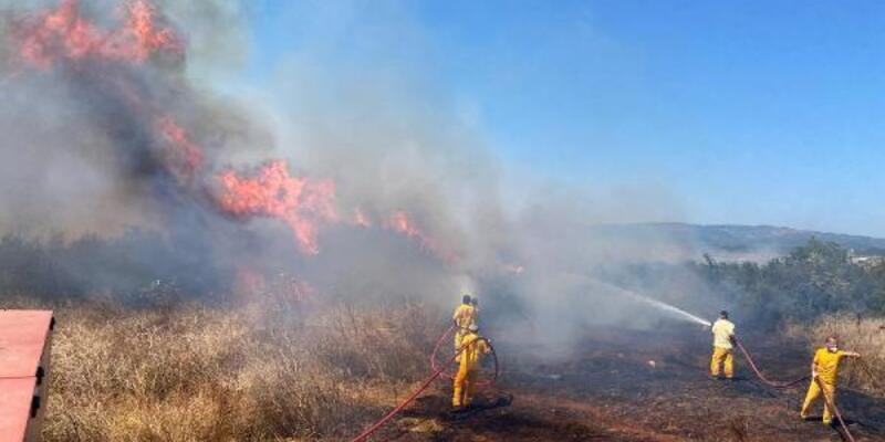 Son dakika... Geçen yıla göre yangın sayıları yüzde 30'luk bir artış gösterdi