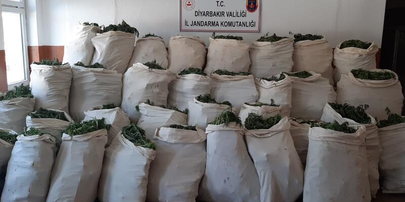 Diyarbakır'da operasyon: 1 milyon 119 bin kök kenevir ve 756 kilogram esrar ele geçirildi