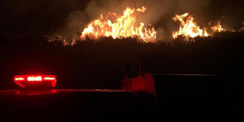 Urla'da otluk alanda yangın!