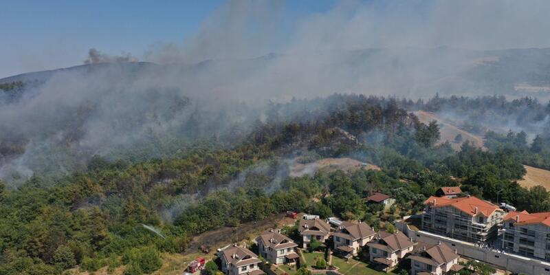 Son dakika... Bakan Pakdemirli: Bursa ve Muğla'daki orman yangınları kontrol altına alındı