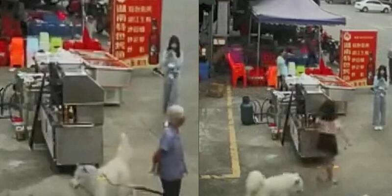 Koşan köpeğin tasması ayağına takılıp düşen kadın hayatını kaybetti