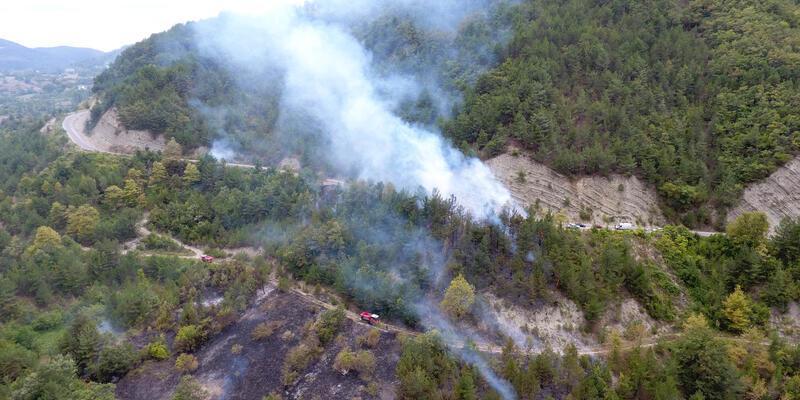 Otları temizlemek isterken ormanı yaktı