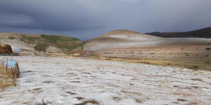 Son dakika.. Ardahan'a kar gibi dolu yağdı