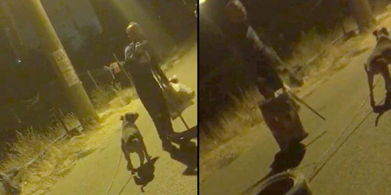 Vicdansızlık! Köpeği araç lastiğine bağlayıp işkence etti, pişkin savunma