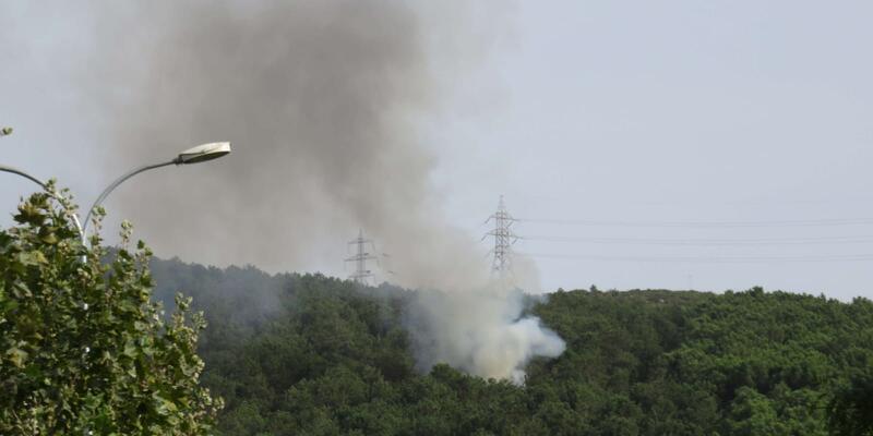 Son dakika... Aydos'ta yine orman yangını