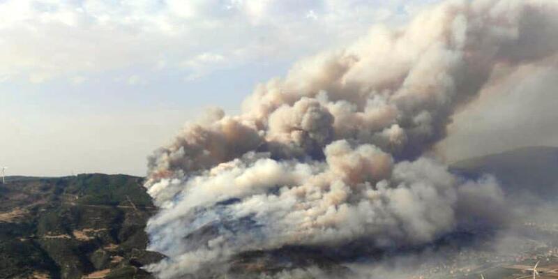 Son dakika... Bakan Pakdemirli: Aydın'daki yangın kontrol altında
