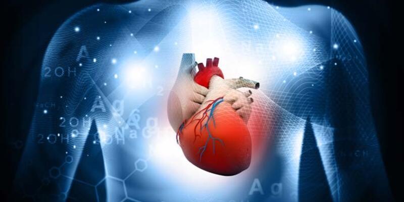 Koronavirüs kalpte de hasar oluşturuyor