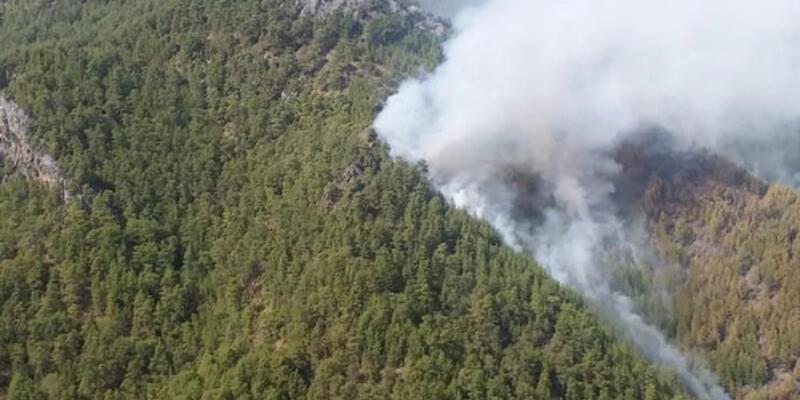 Son dakika... Antalya'da orman yangını