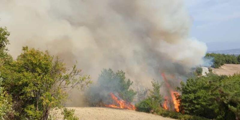 Son dakika yangın haberi: Osmaniye'deki yangın son durum ne?