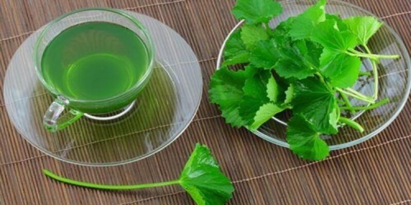 Maydanoz Çayı Nasıl Yapılır? Maydanoz Çayının Faydaları Nelerdir? Neye İyi Gelir?
