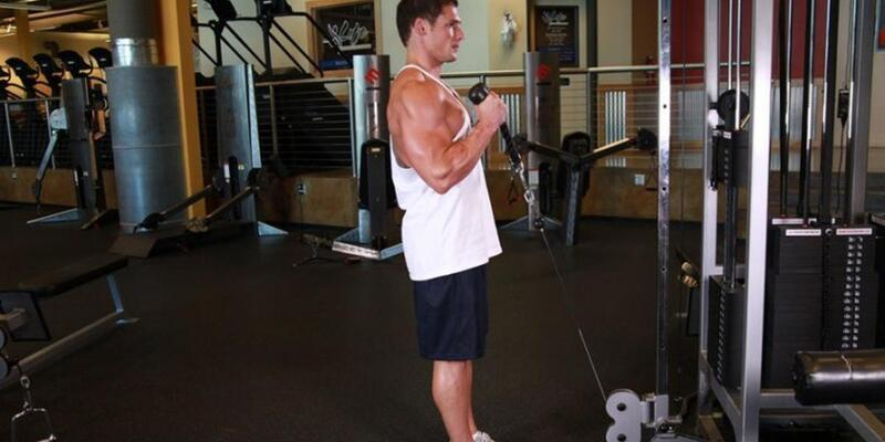 Ön Kol - Biceps Hareketleri: Evde Hangi Biceps Hareketleri Yapılabilir? Evde Yapılabilecek Egzersizler