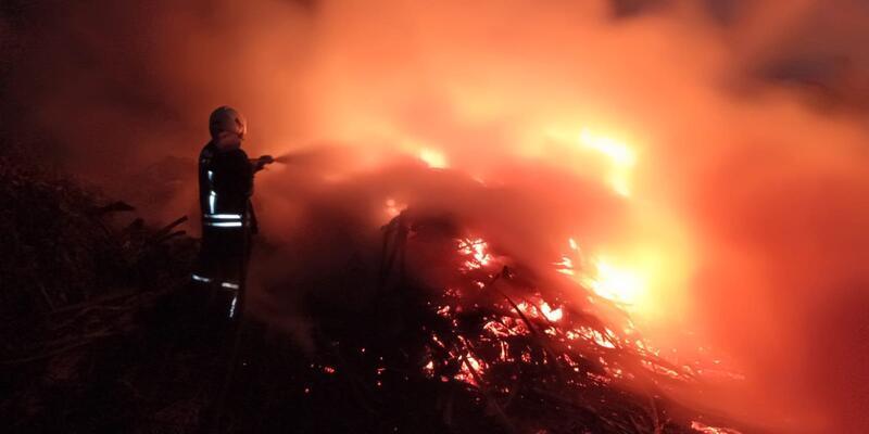 Muğla'da sazlık alanda yangın