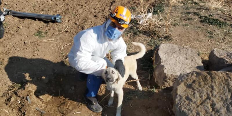 4 gündür su kuyusunda mahsur kalan köpek kurtarıldı