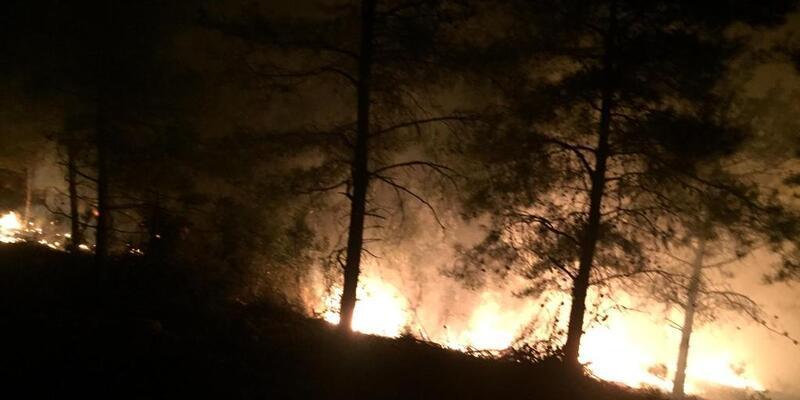 Son dakika haberi... Hatay'da orman yangını!