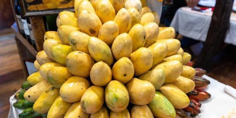 Mangonun faydaları nelerdir, neye iyi gelir?