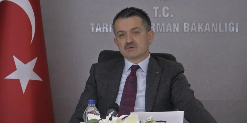 Bakan Pakdemirli: Yanan bölgelerin başka amaçla kullanılmasına müsaade edilmez