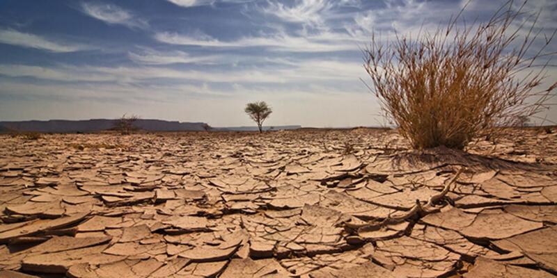 Dünya Meteoroloji Örgütü: 2020'nin en sıcak üç yıldan biri olması bekleniyor